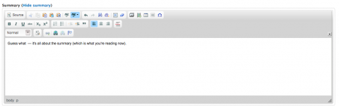 Screen shot of the Summary editor
